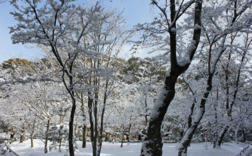 雪の香り演出