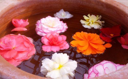 花の香り空間演出